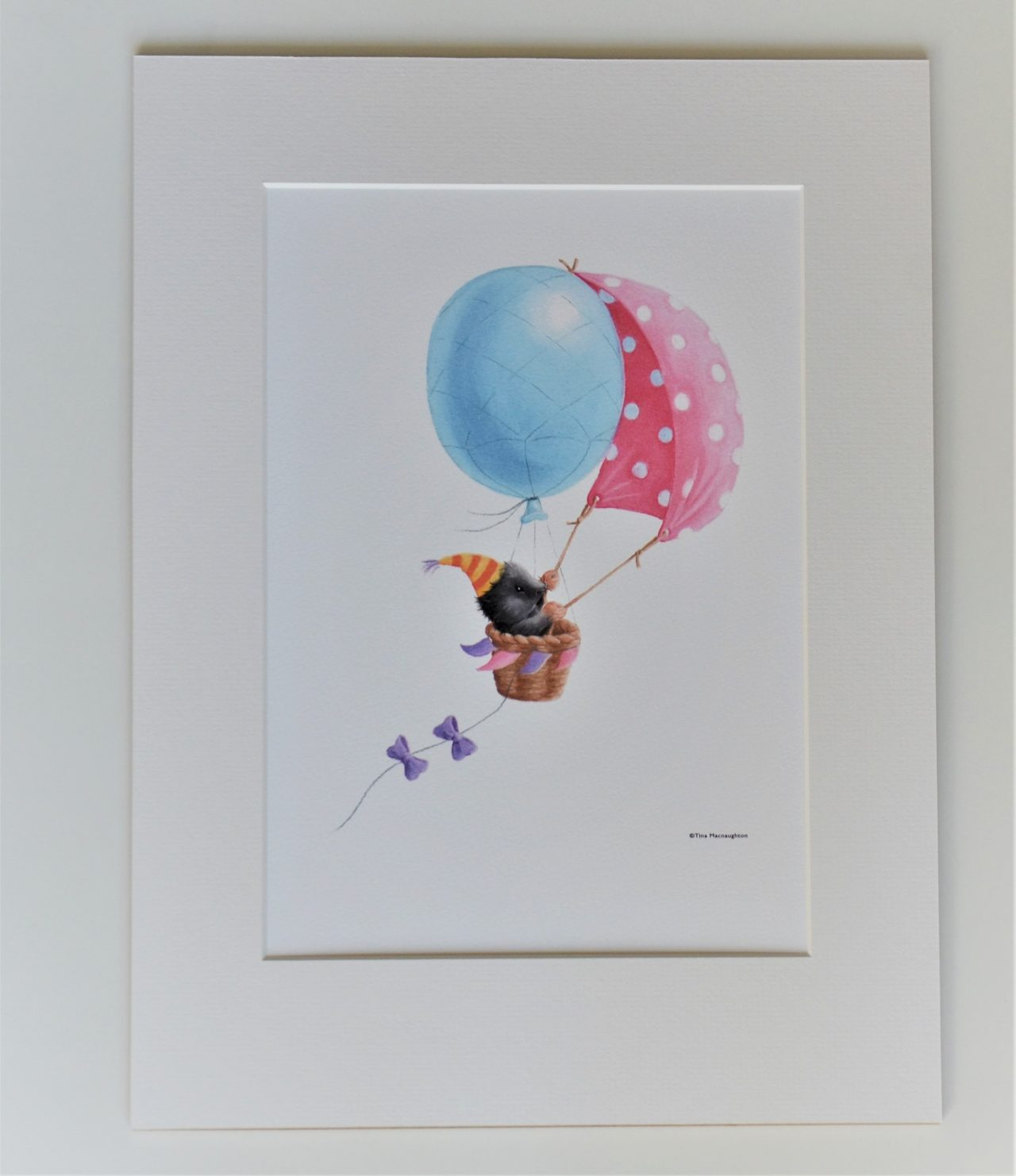 Mole in Balloon Boat by Tina Macnaughton.
