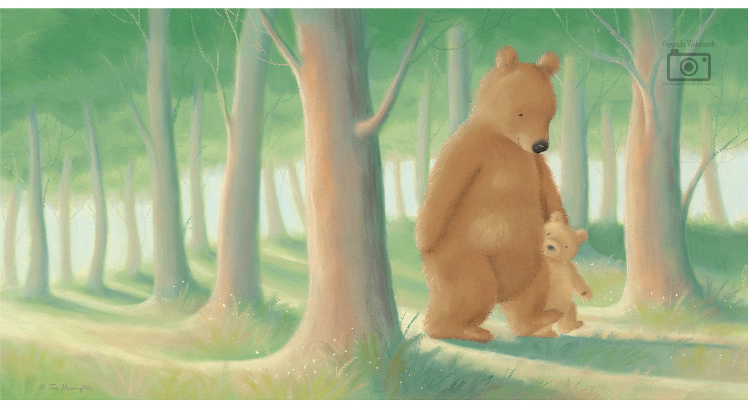 My Daddy and Me illustrated by Tina Macnaughton.