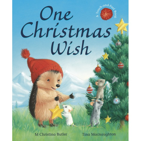 One Christmas Wish illustrated by Tina Macnaughton.