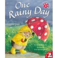 One Rainy Day illustrated by Tina Macnaughton.