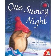 One Snowy Night illustrated by Tina Macnaughton.