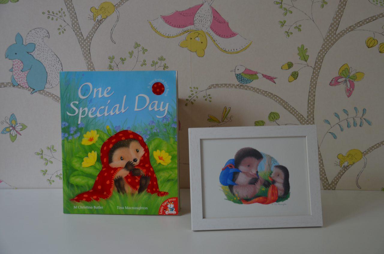 One Special Day illustrated by Tina Macnaughton