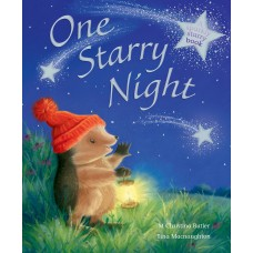 One Starry Night illustrated by Tina Macnaughton.