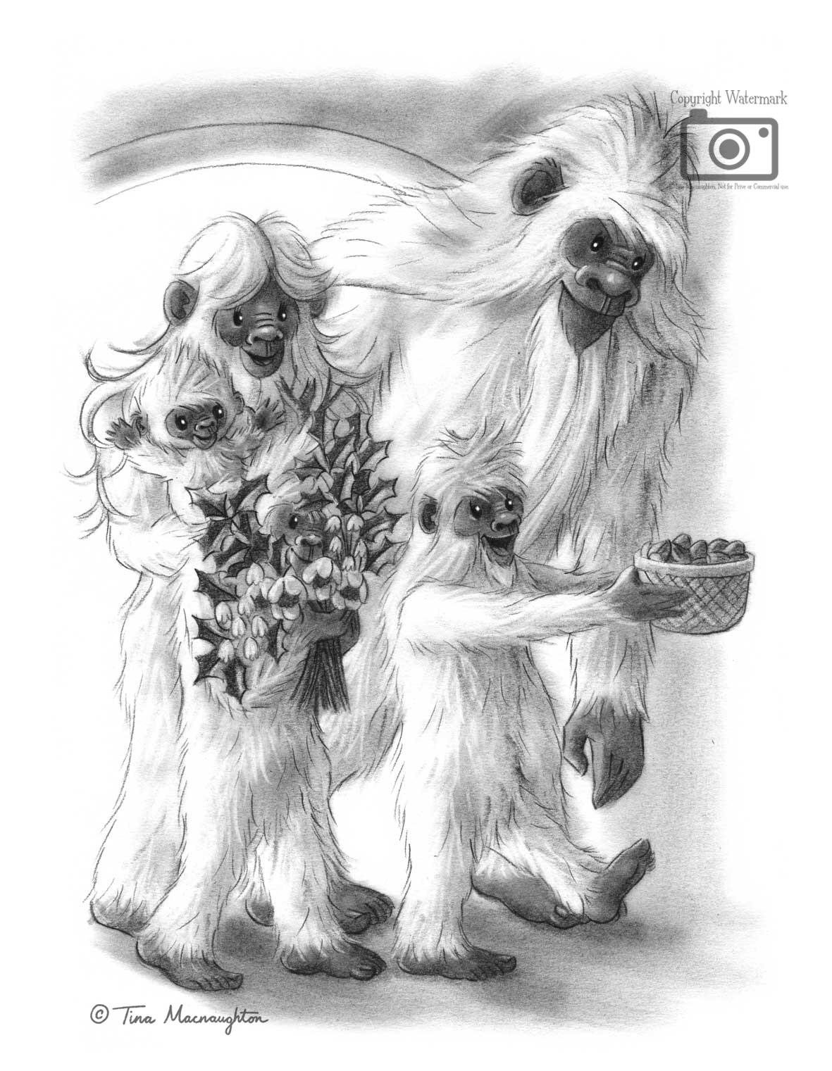 Snowball the Baby Bigfoot illustrated by Tina Macnaughton