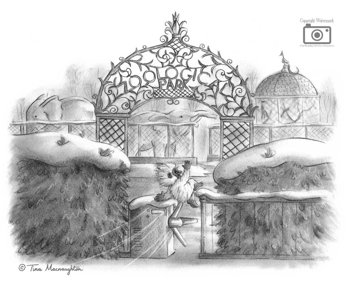 Snowball the Baby Bigfoot illustrated by Tina Macnaughton.