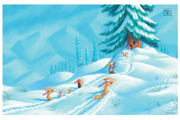One Christmas Journey illustrated by Tina Macnaughton.