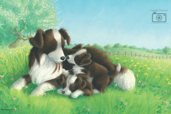 Collie Mum and Two Pups by Tina Macnaughton