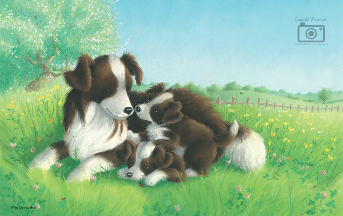 Collie Mum and Two Pups by Tina Macnaughton
