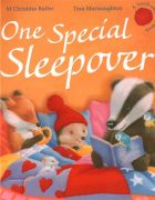 One Special Sleepover illustrated by Tina Macnaughton.