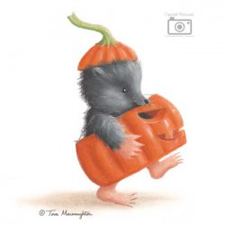 Pumpkin Mole by Tina Macnaughton.